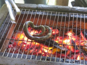 Snakes were put on the BBQ still alive....